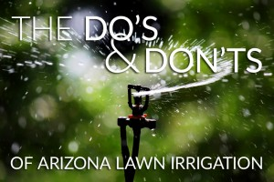 Arizona Lawn Irrigation Tips